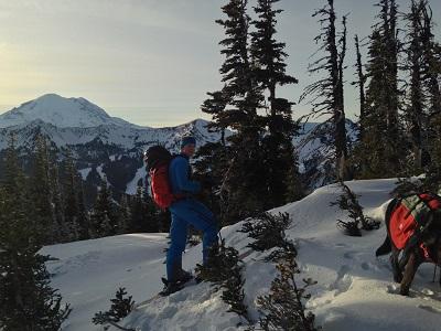 Go skiing!
